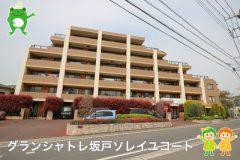 〇グランシャトレ坂戸ソレイユコート〇